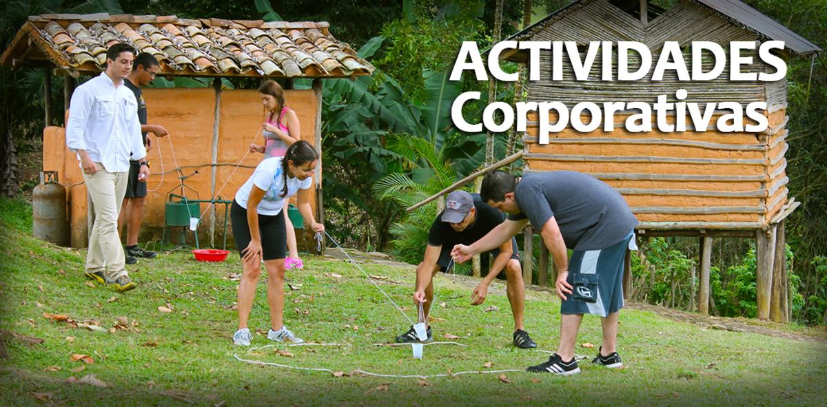 05 actividades corporativas